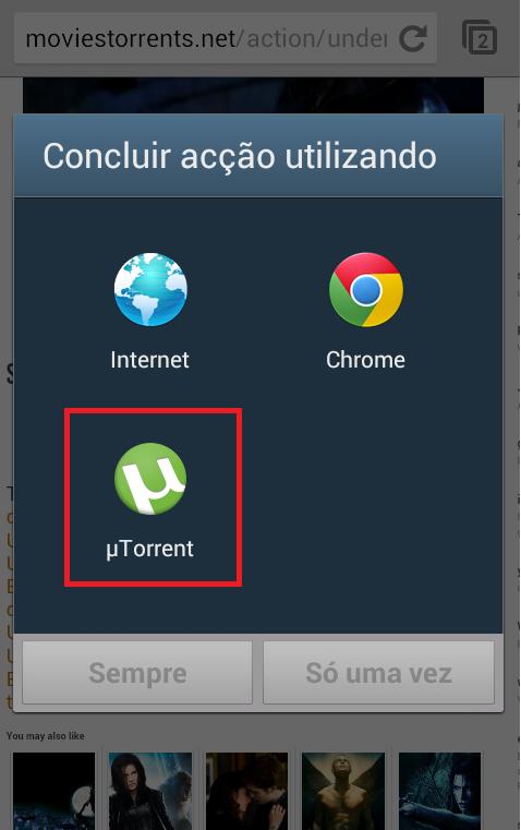 torrent5